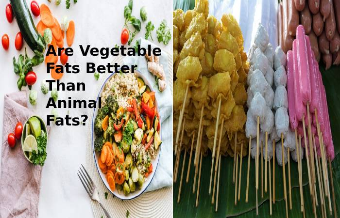 Are Vegetable Fats Better Than Animal Fats?