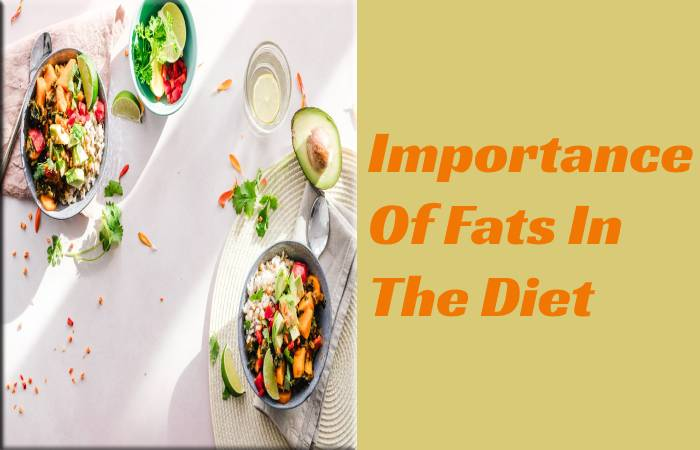 Importance Of Fats In The Diet