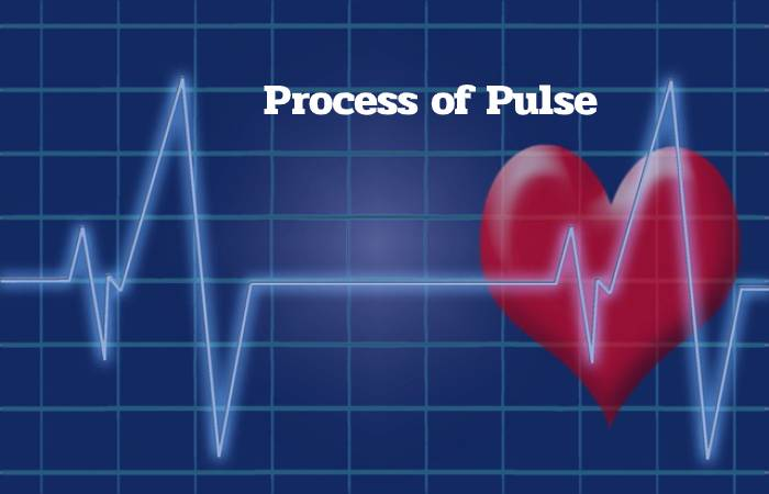 Process of Pulse